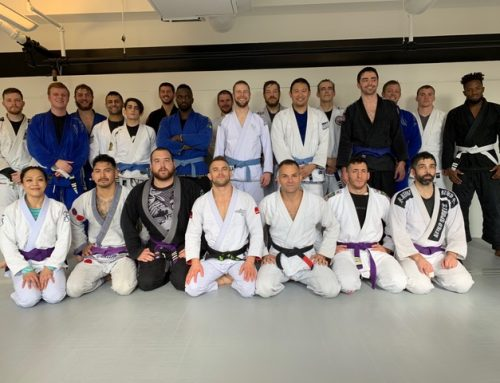Congratulations: New Blue and Purple Belts